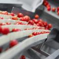 Mbo, hbo en voedingsbedrijven werken in Vlaardingen samen in één gebouw